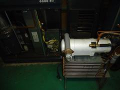 DSC00546.JPG