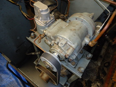 DSC00703.JPG